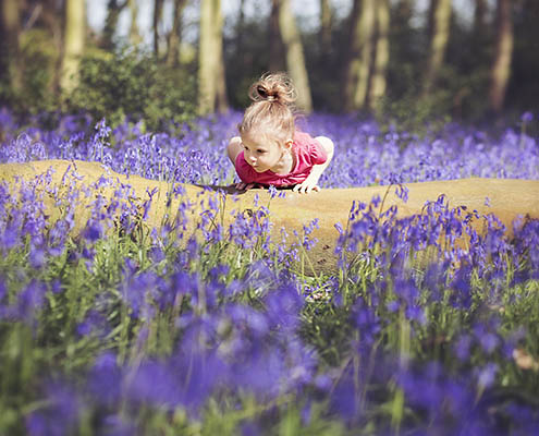 Bluebell Photography Oxfordshire